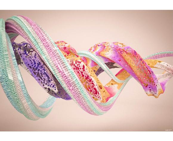 Machas artist Leonardoworx maglia-fluid