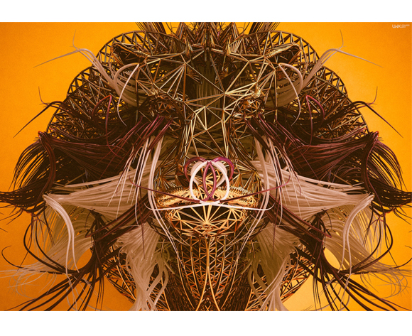 Machas artist Leonardowrx lion
